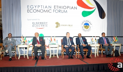 Ethio-Egyptian Economic Forum held in Addis Ababa on November 2nd